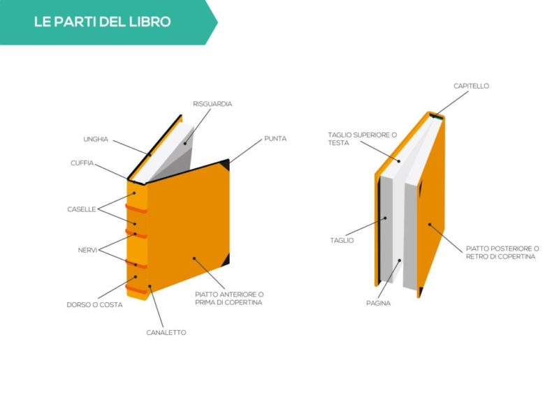 Anatomia del libro