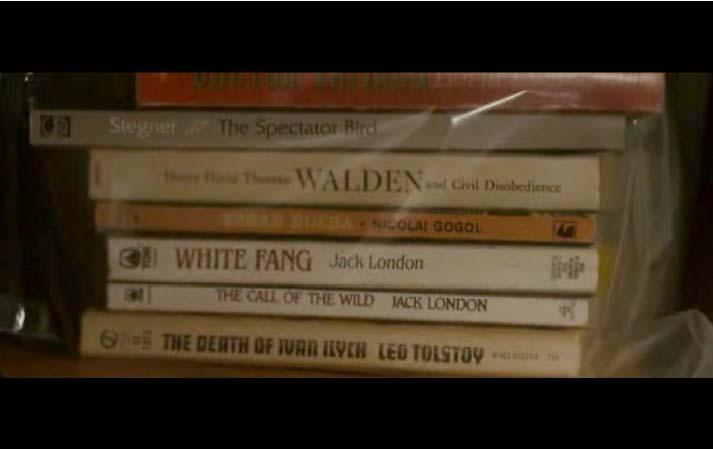 libri film into the wild